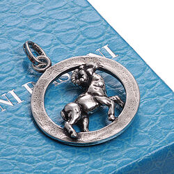Raspini Sterrenbeeld Ram In Ring