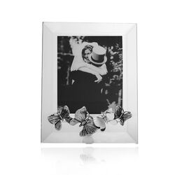 Raspini fotolijst zilver vlinders