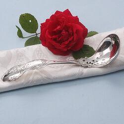 Zilveren natfruitschep