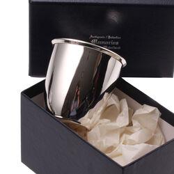 Zilveren Beker Cup