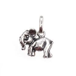 Raspini bedel olifantje