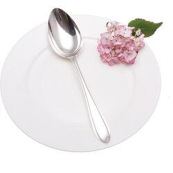 Puntfilet Zilveren Dinerlepel
