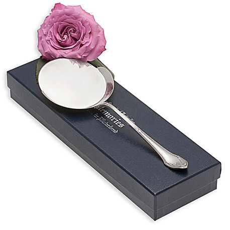 zilveren spiegeleischep