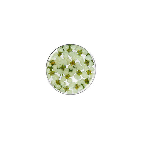 MY iMenso flora munt wit groen 24-1181