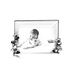 Zilver fotolijstje met vlinders raspini
