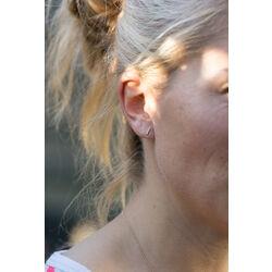 Gouden oorbellen staafje met zirkonia