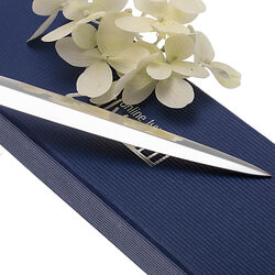 Verzilverde briefopener rondfilet