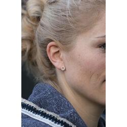 Gouden oorstekers cirkels zirkonia