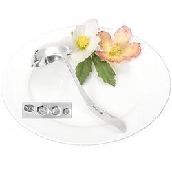 Puntfilet zilveren juslepel