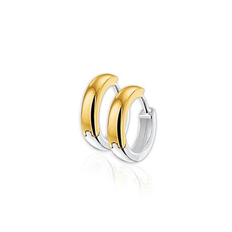 Gouden klapcreolen tweezijdig bicolor