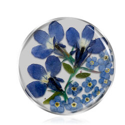 Flora Blue insignia 33 mm MY iMenso 331329