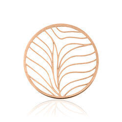 MY Imenso cover rosé leaf 331354