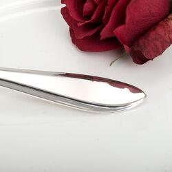 Puntfilet zilveren spiegeleischep