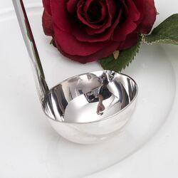 Zilveren bowllepel Haags Lofje