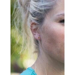 Gouden sieradenset oorbellen met hanger citrien