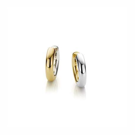 Gouden kleine bicolor creolen 12 x 3 mm