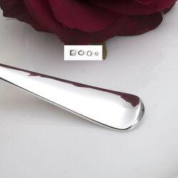 Belegvork zilver model 250