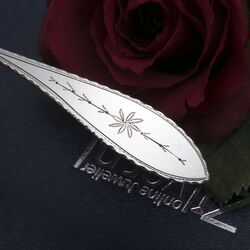 Theelepels van zilver 12 stuks Empire stijl