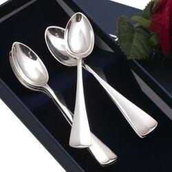 6 zilveren theelepels haags lofje