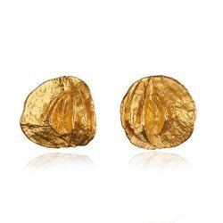 Lapponia gouden oorstekers Ruska 132001