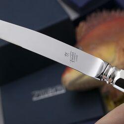 Steakmes Haags lofje zilver handvat