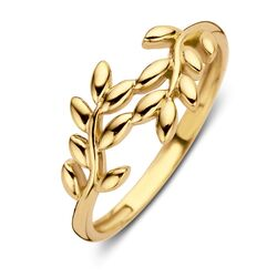 Geelgouden ring met twee takjes