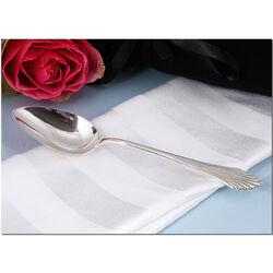 Zilveren dessertlepel waaier 18 cm