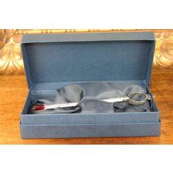 Zilveren wijnthermometer van Raspini