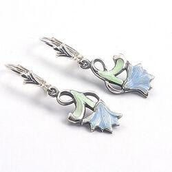 Zilveren Oorhangers Groen Blauw Emaille