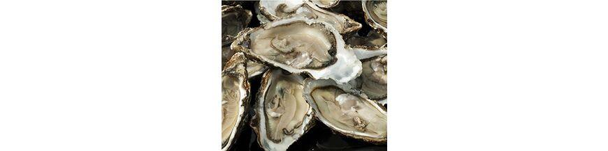 Zilveren oestervork kreefthaken
